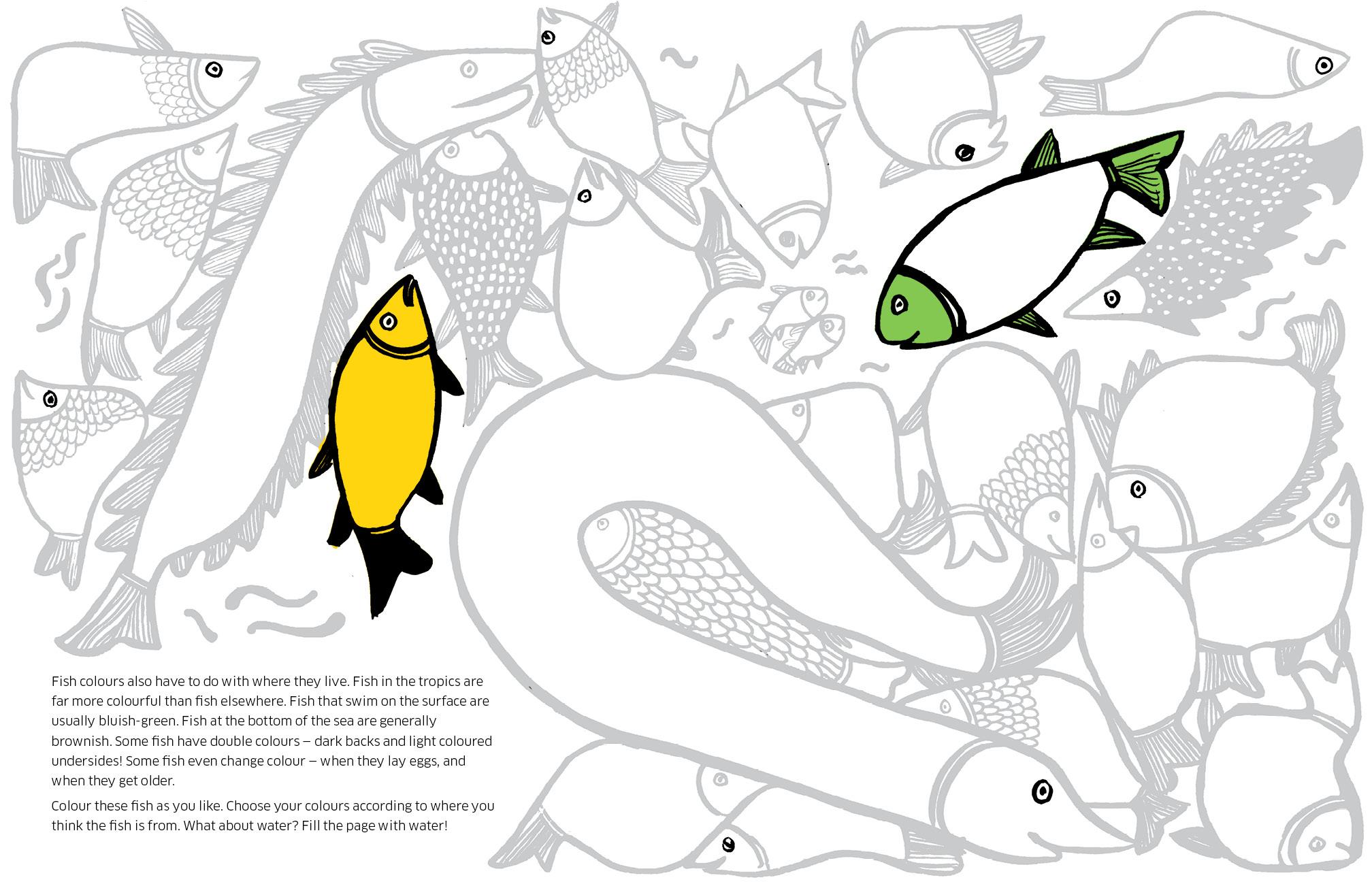 8 ways to draw a fish spread_LR3.jpg