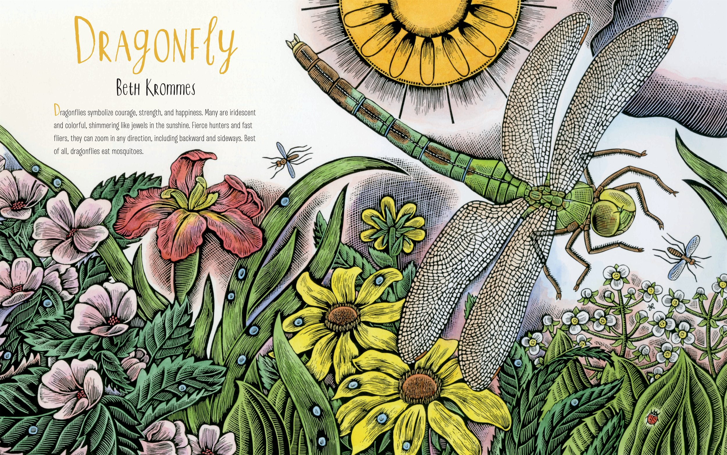 """""""Dragonflies symbolize courage, strength, and happiness. Many are iridescent and colourful, shimmering like jewels in the sunshine. Fierce hunters and fast fliers, they can zoom in any direction, including backwards and sideways. Best of all, dragonflies eat mosquitoes."""""""