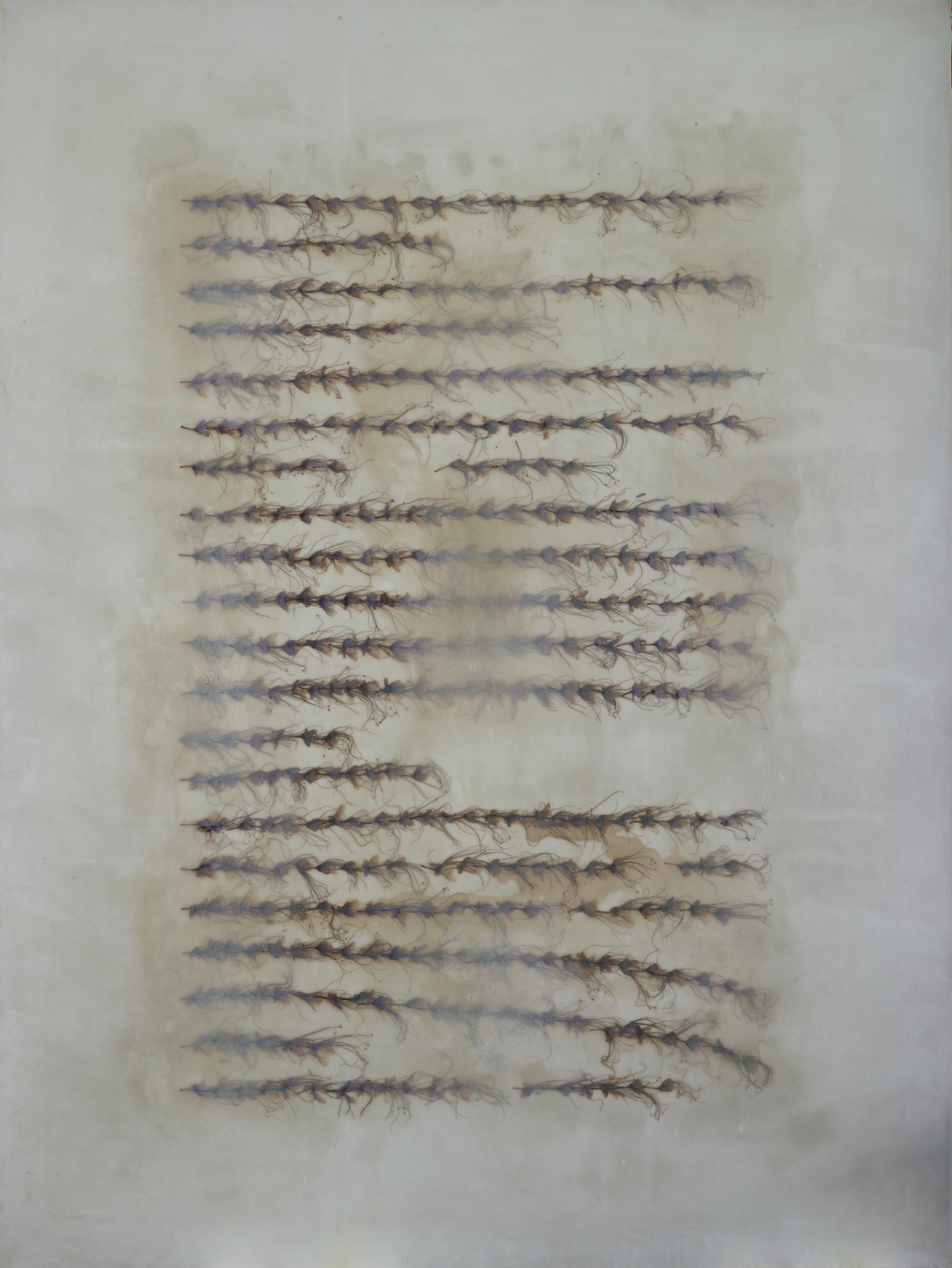 Tayfun Erdoğmuş, Untitled 2008