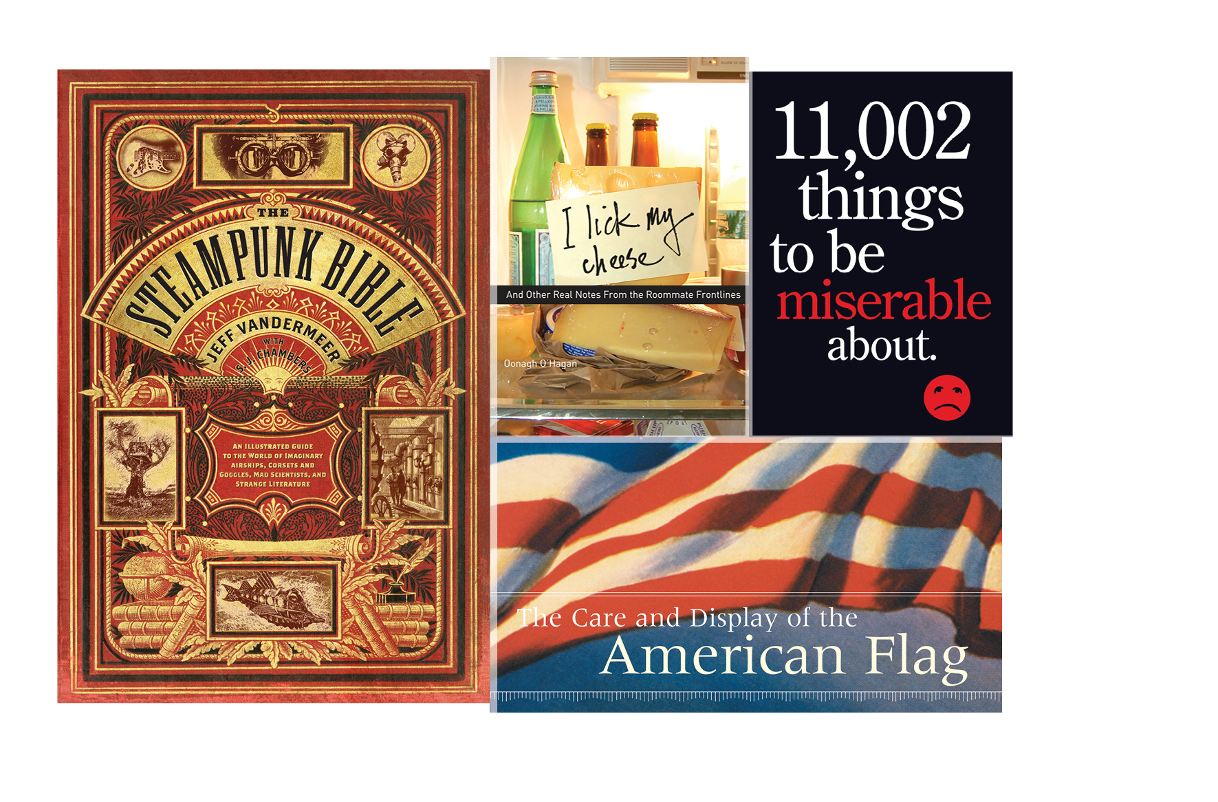 Pop culture -   The Steampunk Bible, I Lick My Cheese, 11,002 Things to Be Miserable About, Care and Display of the American Flag