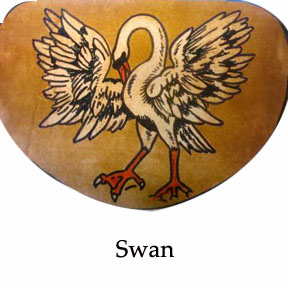 swan.jpg