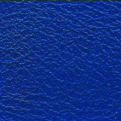 Nassa Honda Blue
