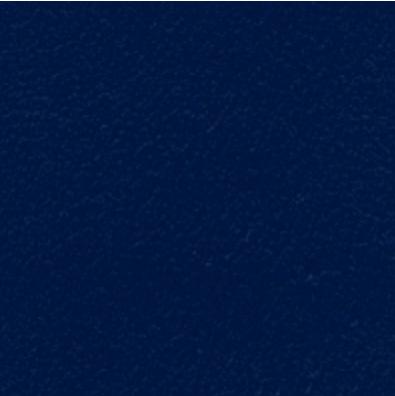 Nassa Waxy Blue