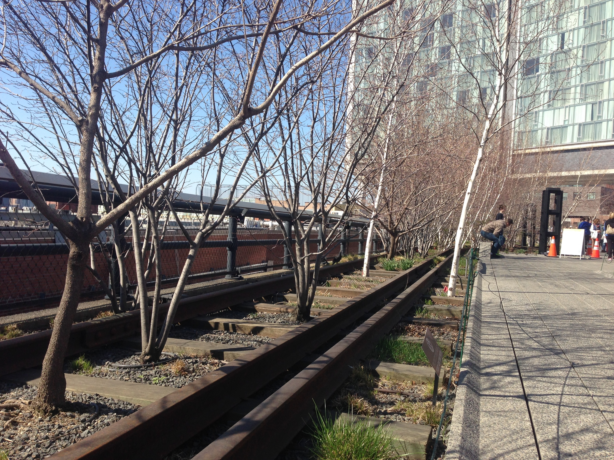 Our visit to the High Line