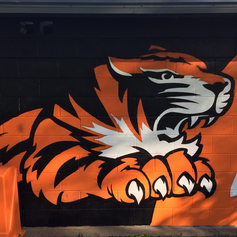 tiger SUNY