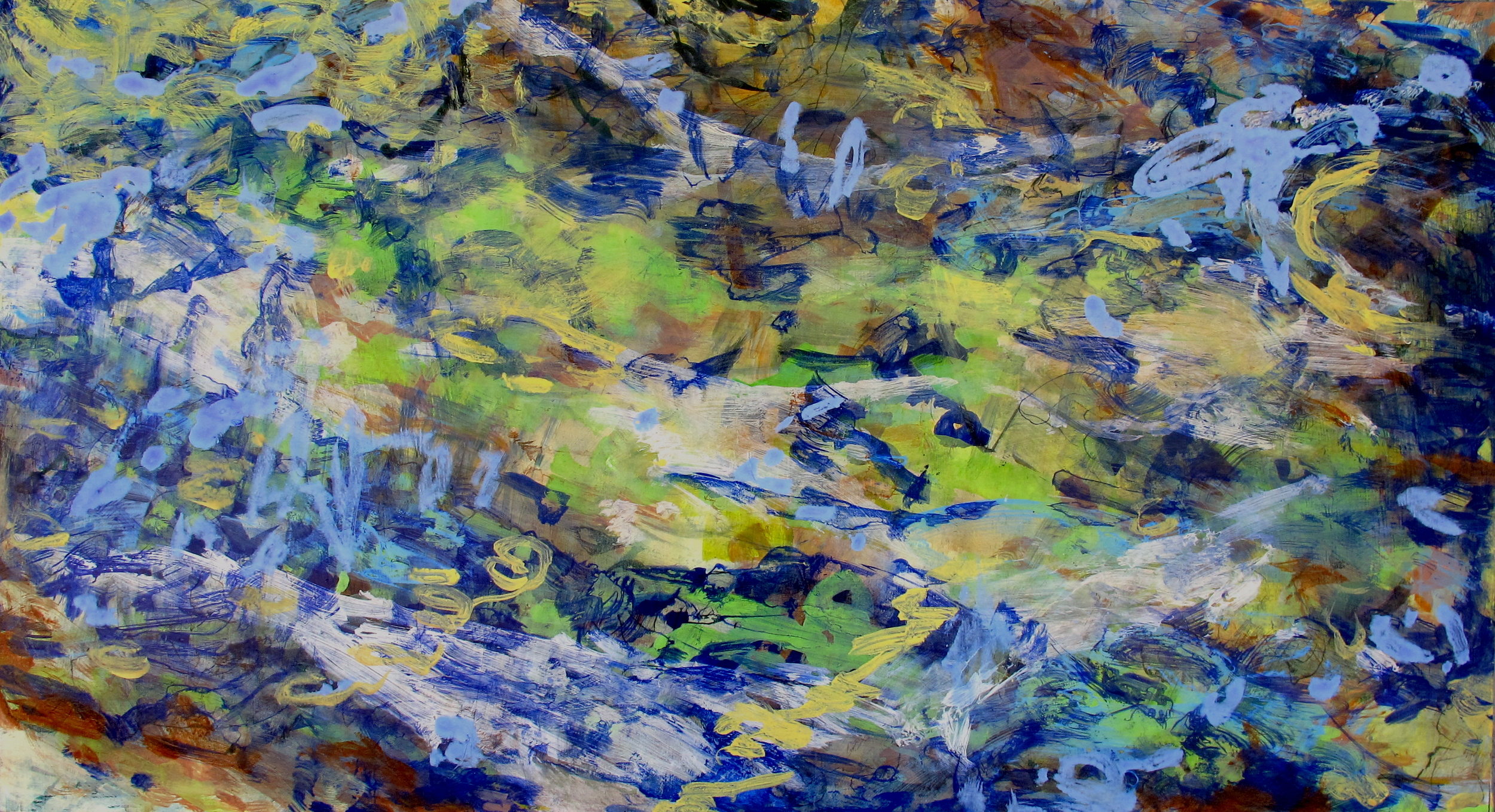 Meadow, acrylic, ink and pigment on wood, 2011, 24''x48''