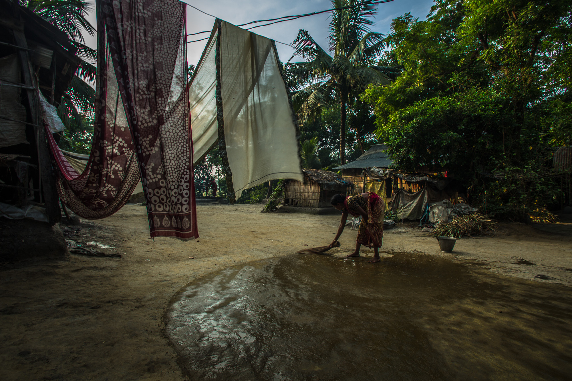 Taroni's wife, Baby Shakiri, spreads their rice harvest on the ground to dry after soaking it in a pond and boiling it.