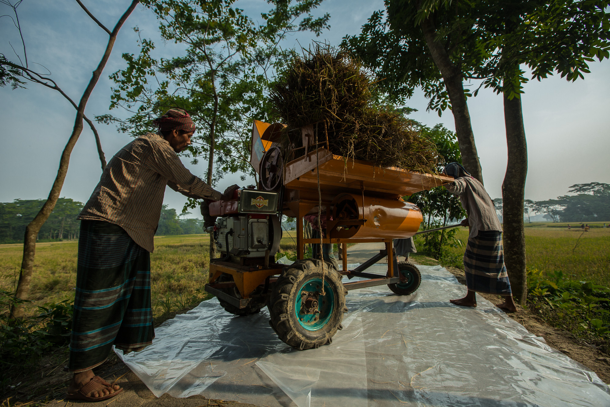 After harvesting rice, farmers mill the rice with a machine to seperate the kernals from the shells.