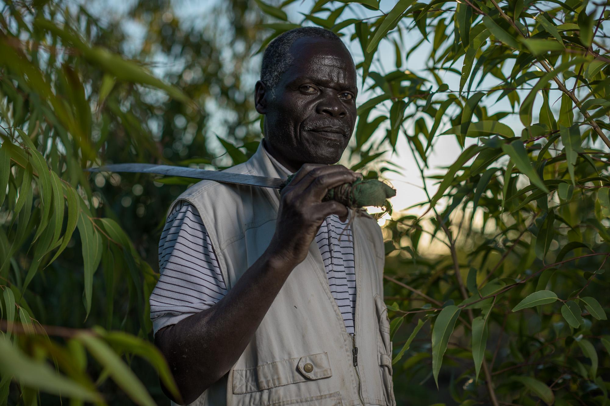 Daniel Mhoni, 68, chairman of the Lucheche Cooperative grows Cor
