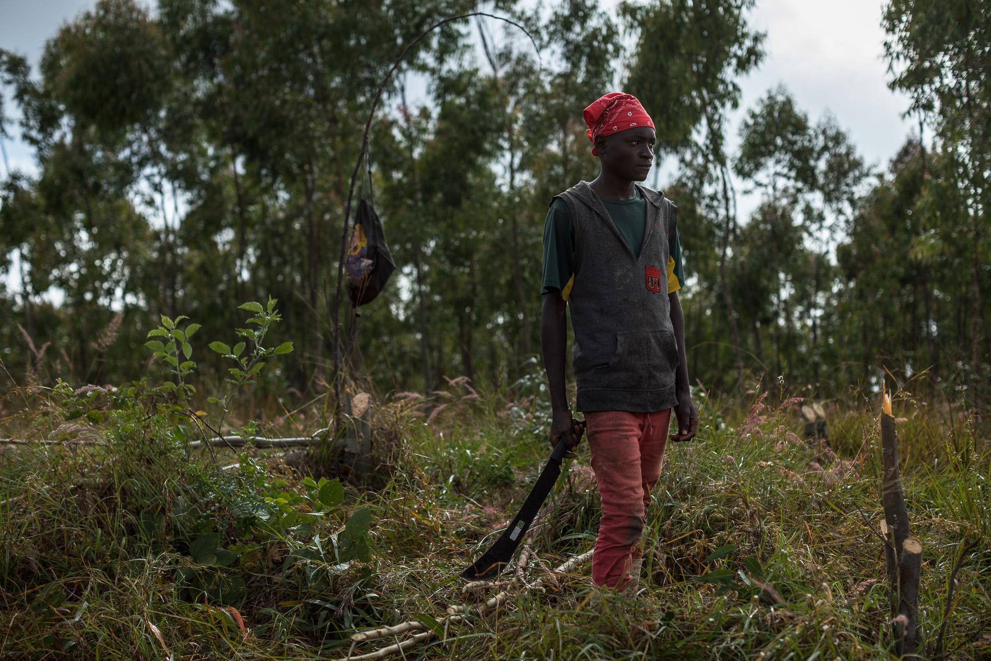 Manward Chisambi, a worker at Kawandama Hills Plantation (KHP)