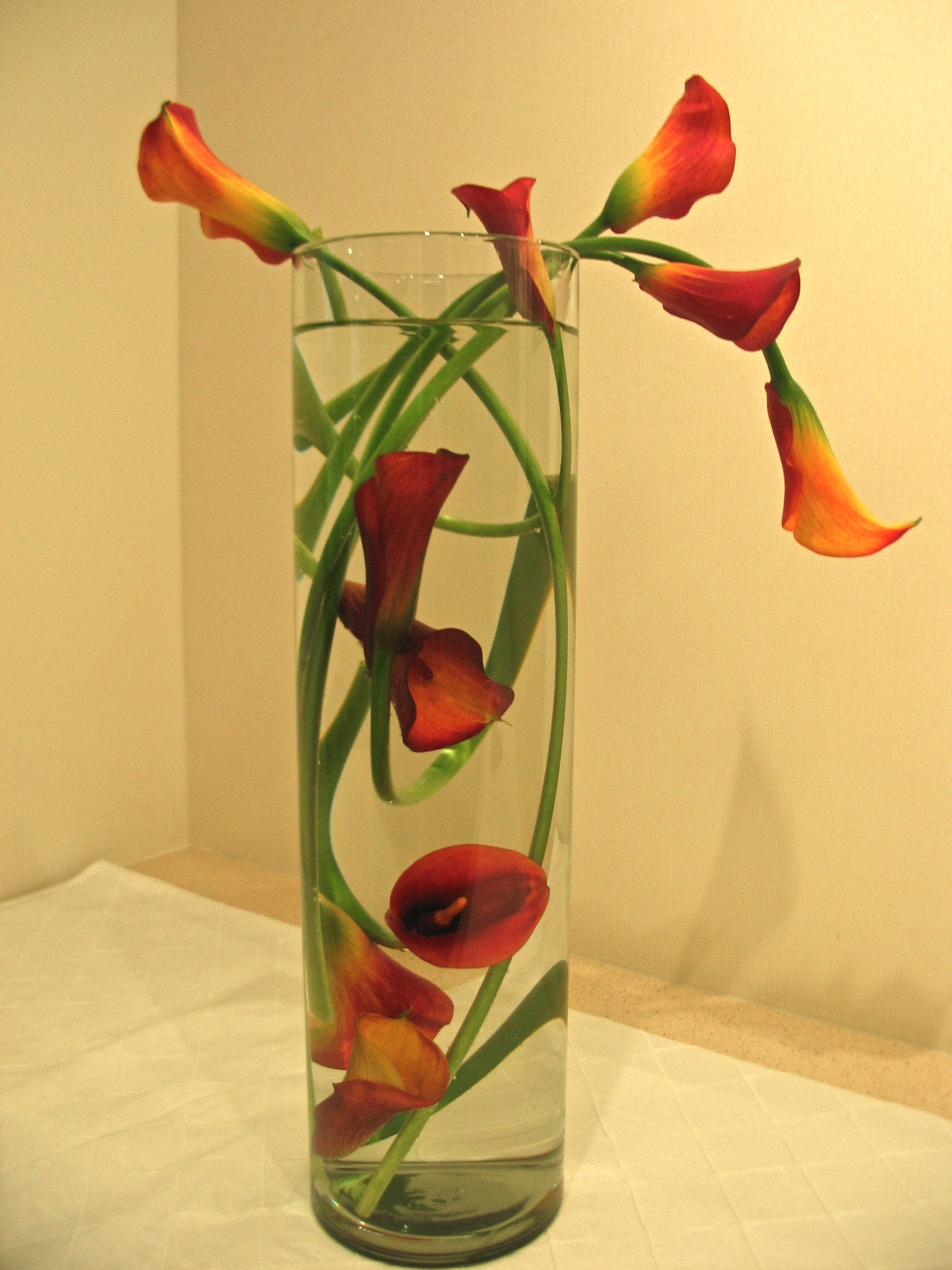 9floating orange calla.JPG