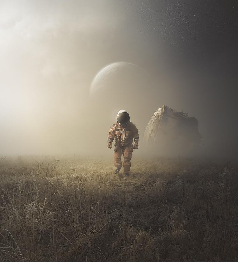 Image credit: Michal Klimczak