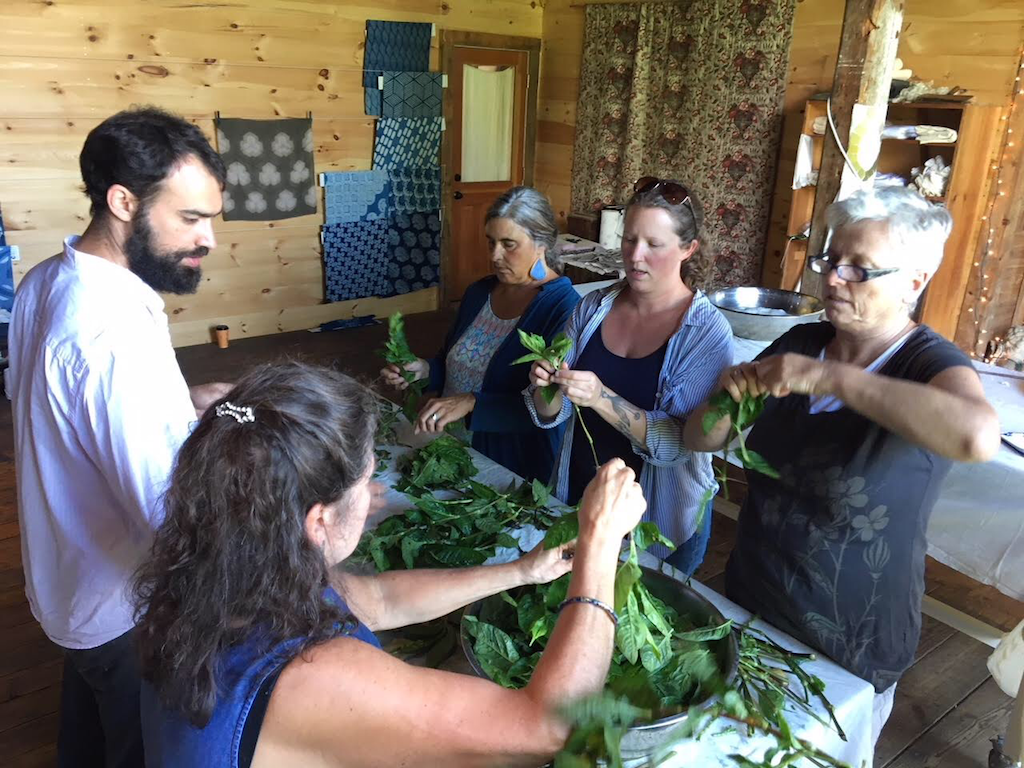 Fresh Leaf Indigo Extraction Workshop Graham Keegan Vermont.PNG