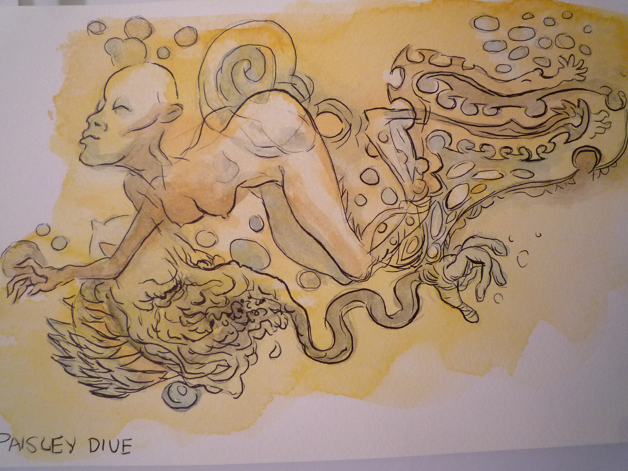 Paisley Dive