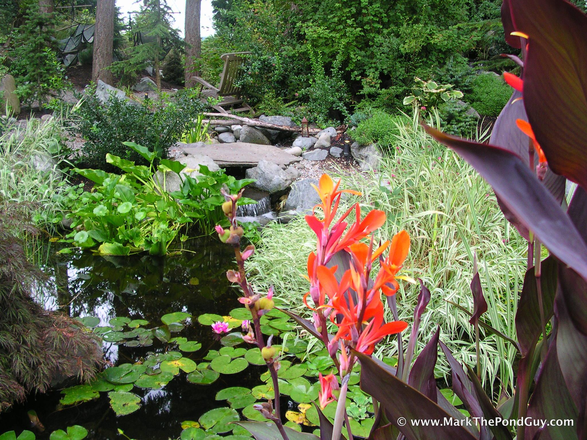 20-the pond store 4.jpg