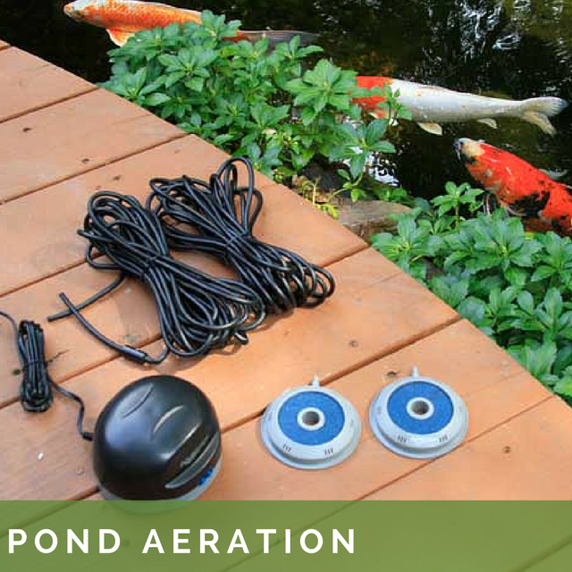 Pond Aeration.png