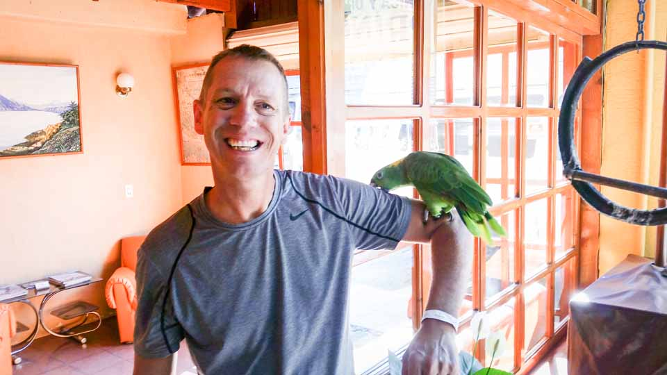 The hotel parrot thought TJ was tasty, but maybe a mite too tough...