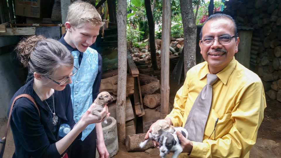 This pastor had puppies!