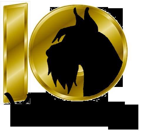 VSGSR 10 Year Icon.png