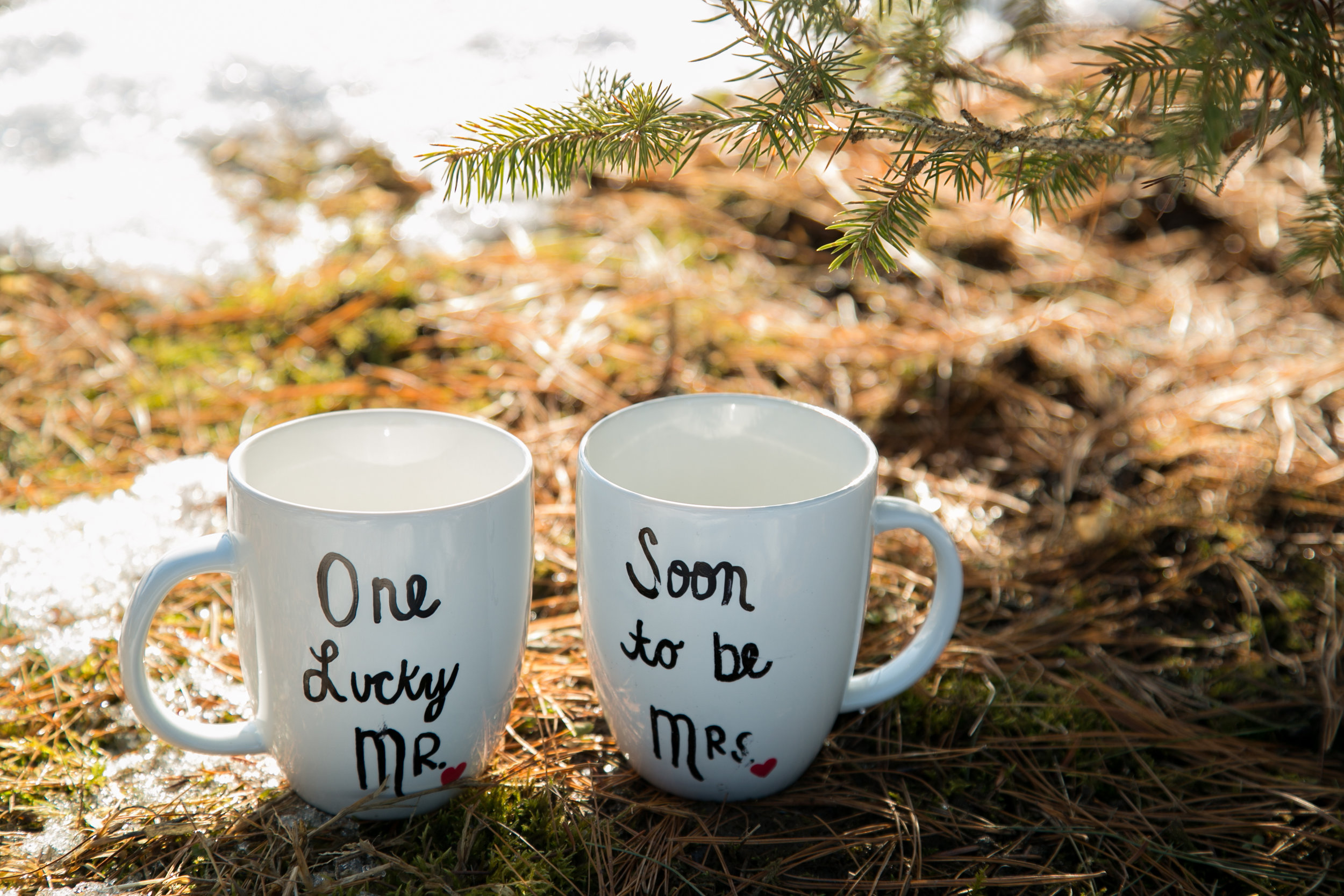 Winter Engagement Props Photo by Chelsea Bolling