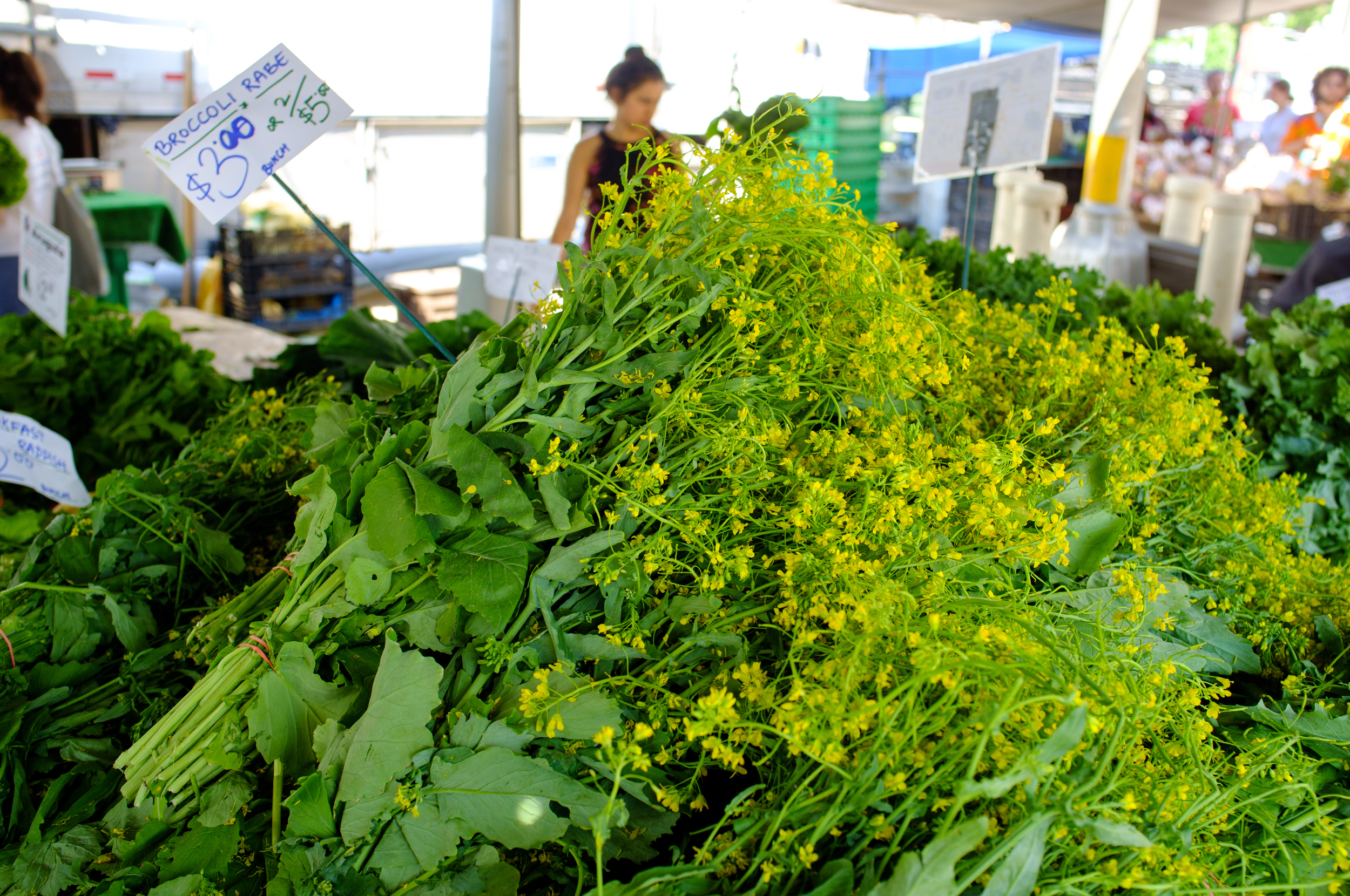 Broccoli Rabe at Grand Army Plaza Greenmarket