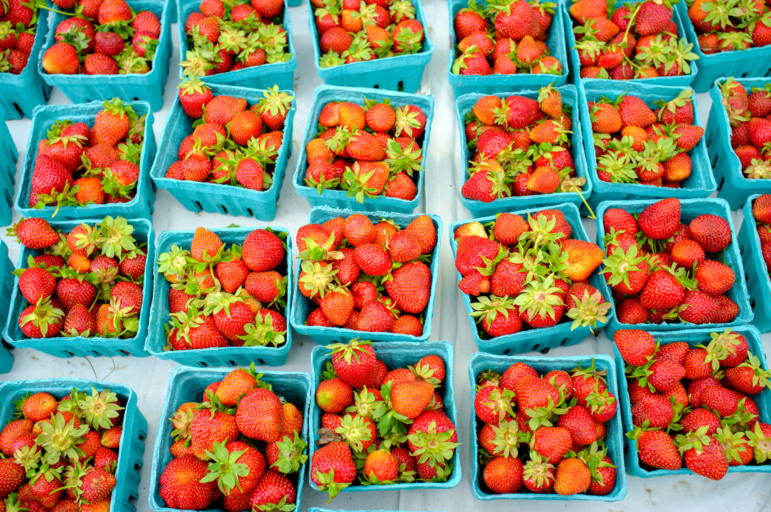 Strawberries at Carroll Gardens Greenmarket