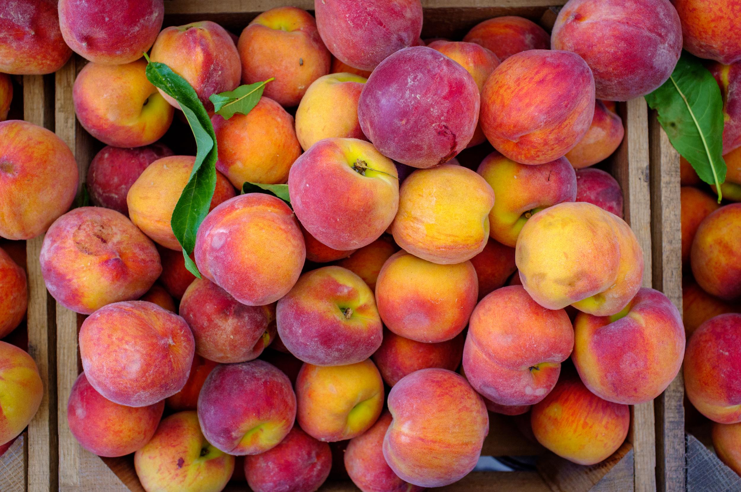Peaches from Toigo Orchards