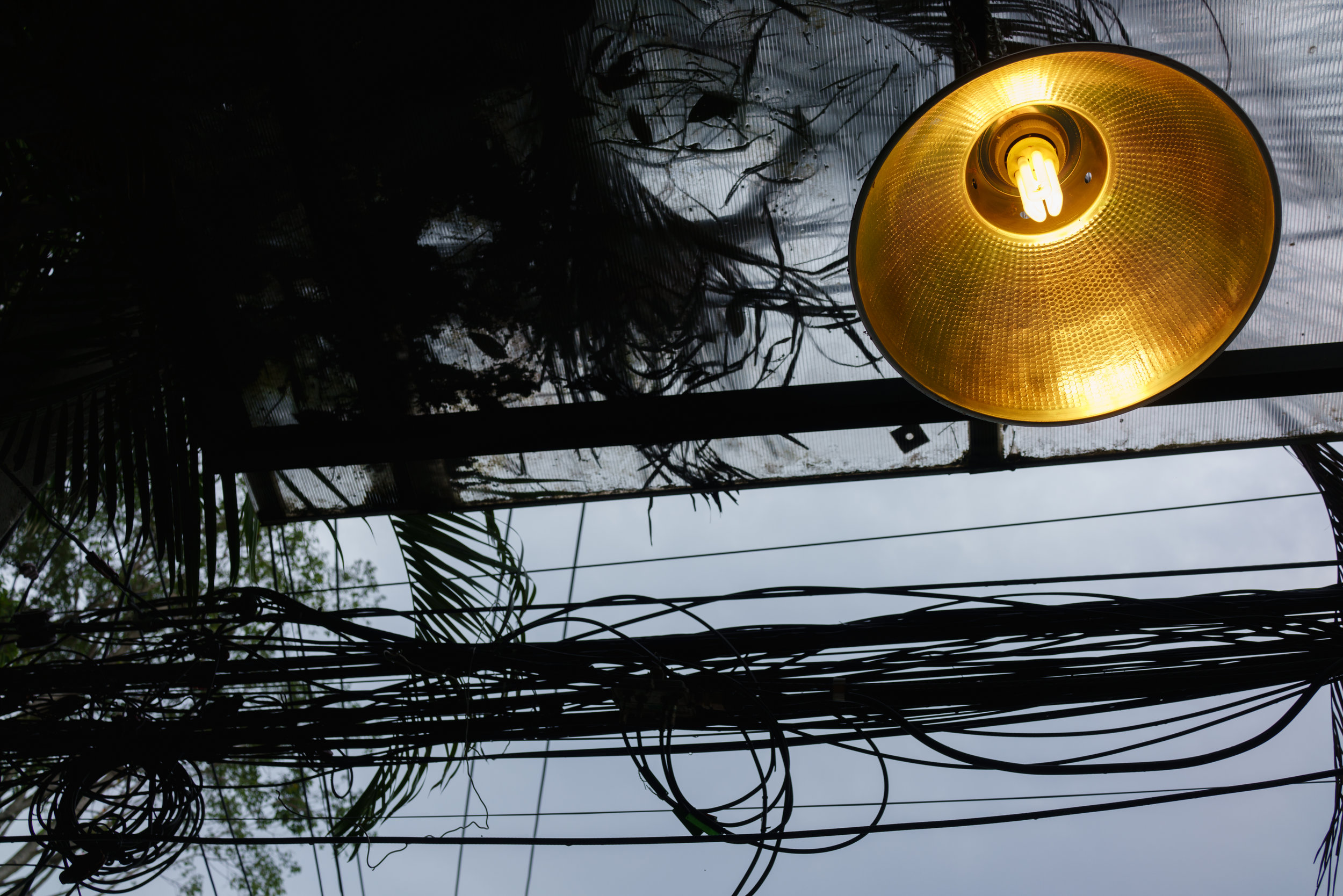 Chiang Mai's precarious entanglements, as seen from Nine-one Coffee's outdoor seating