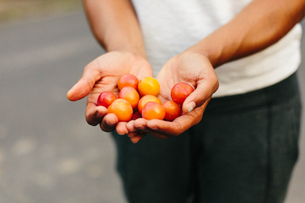 Fresh fruit from a tree in the neighborhood