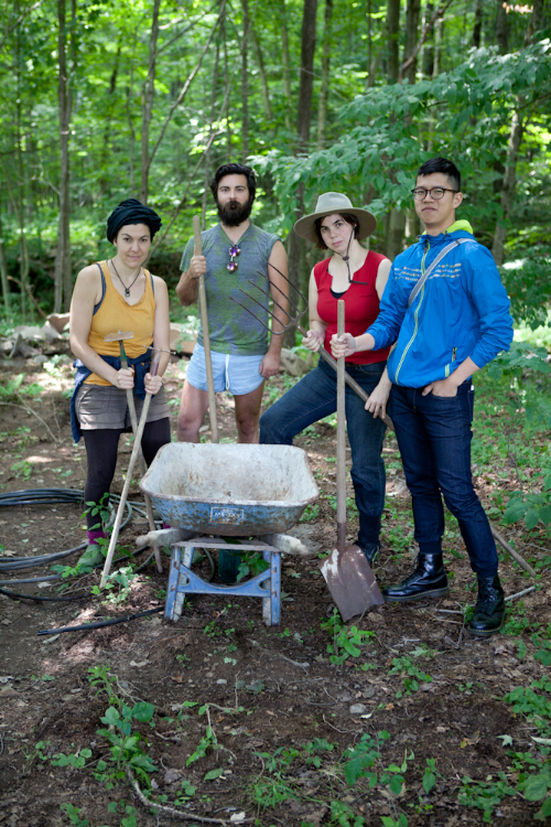The landscaping team, Anne, Adam, Sally and Chihao