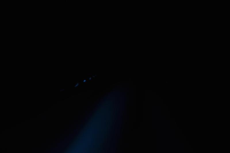 phosphorescence.jpg