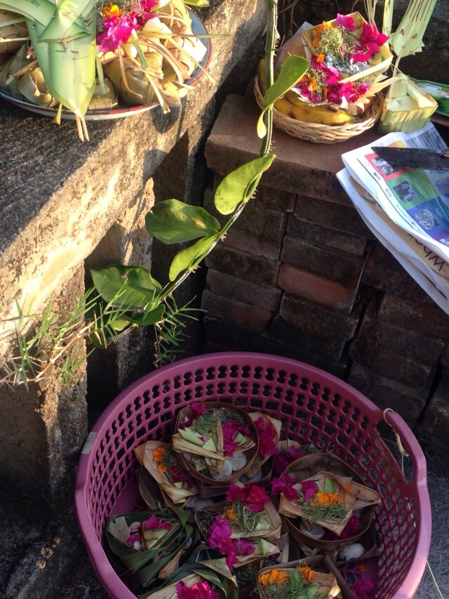 Basket of Canang Sari for the compound. Lots of rice balls.