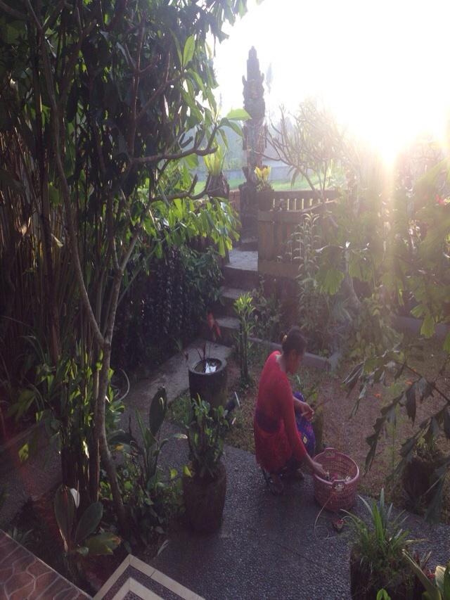 Mama leaving her canang sari.