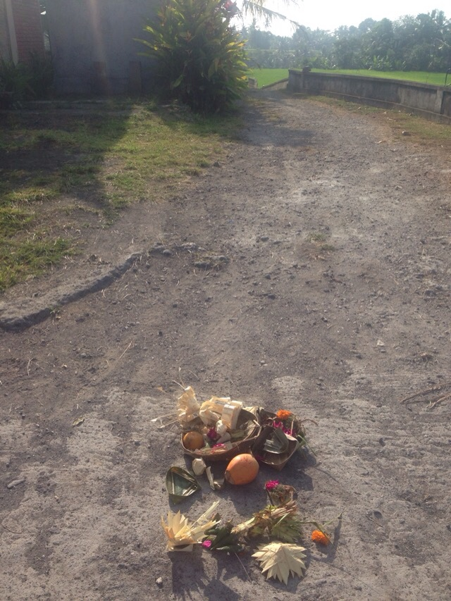 Offerings left at the top of the lane. Coconut, banana and rice.