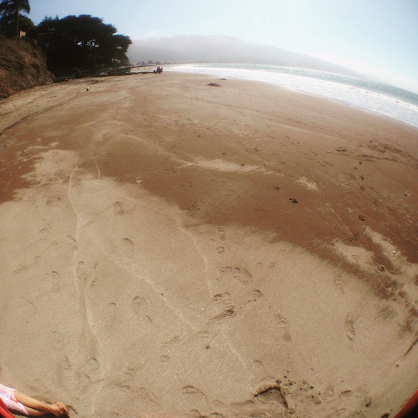 Bolinas Fish Eye