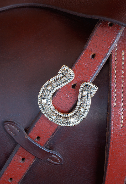 Crystal Equestrian Pin
