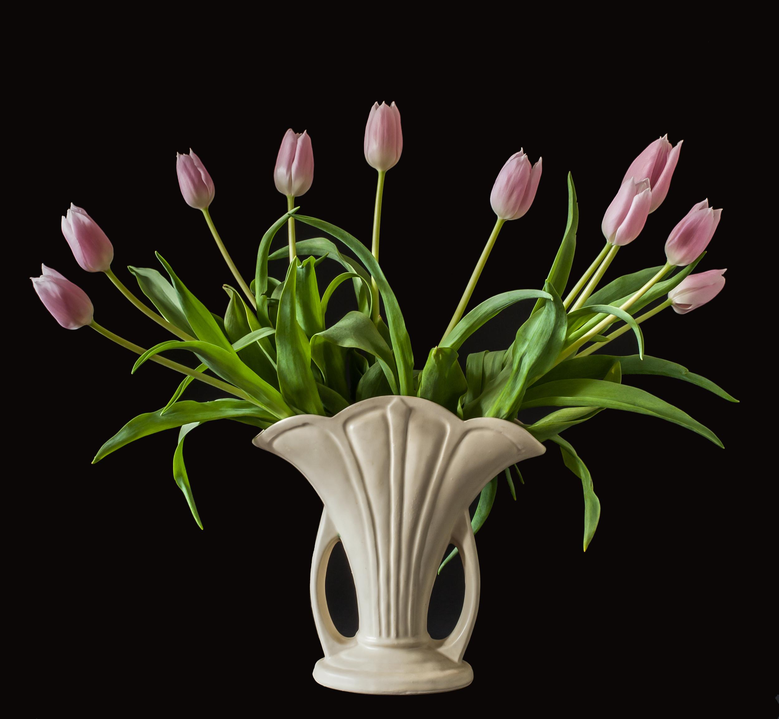 Pink Tulips, Vessel series