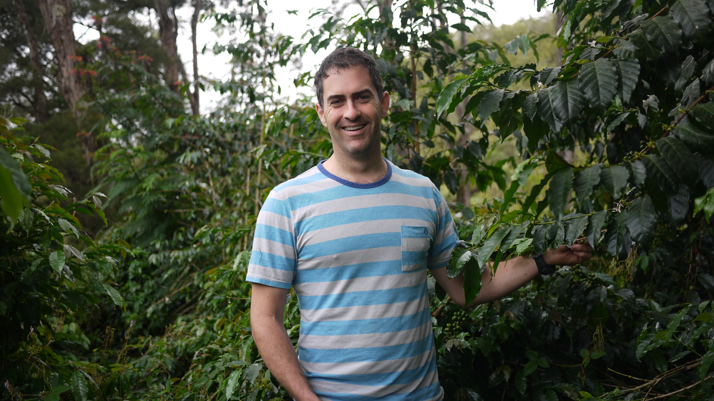 spencer coffee field.JPG