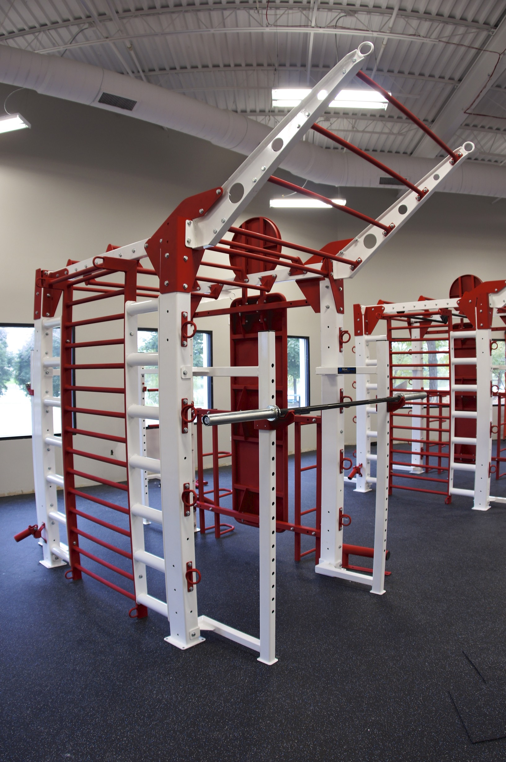 Team Functional training racks