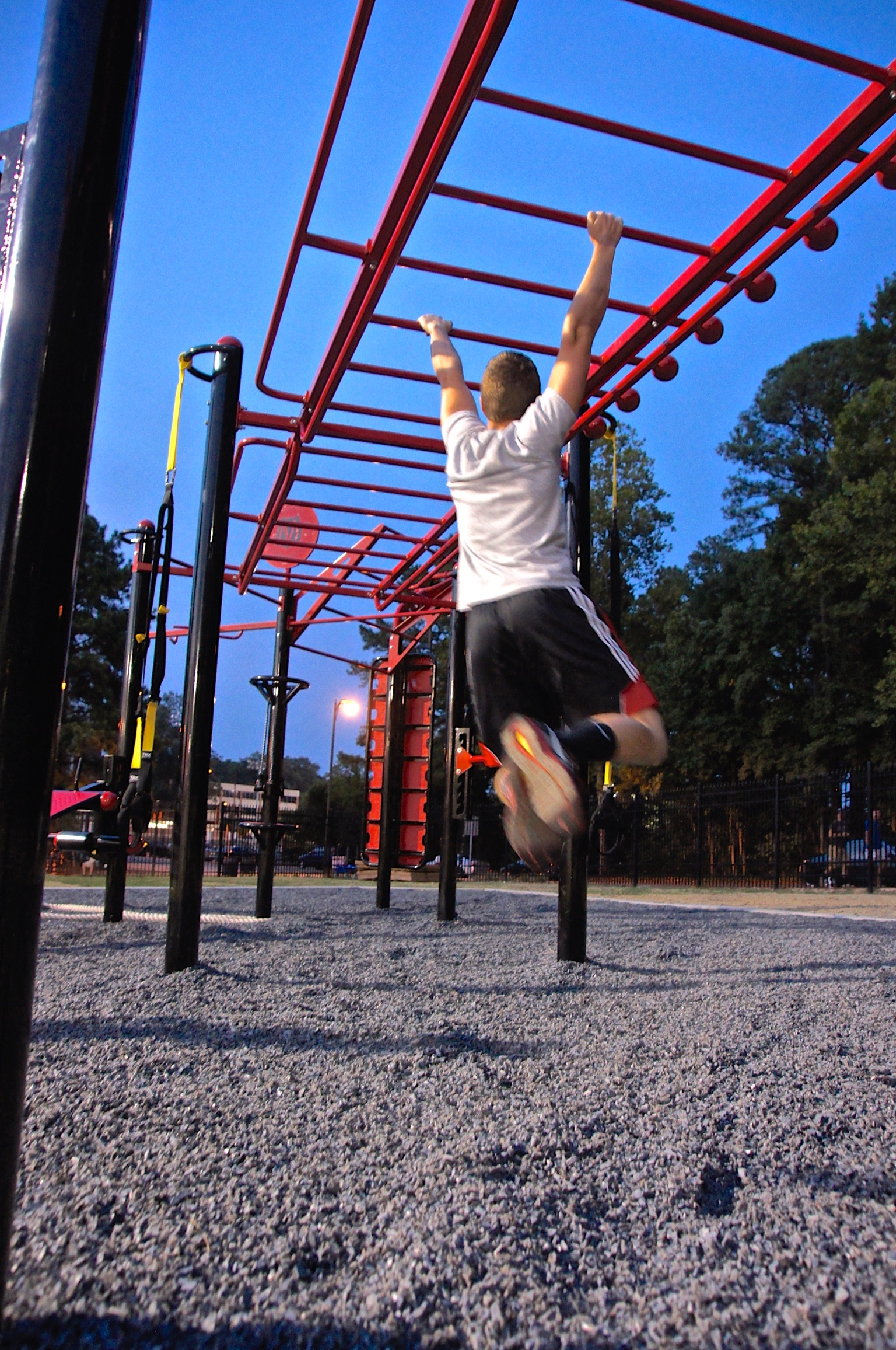 Outdoor monkey bar climb MoveStrong T-Rex