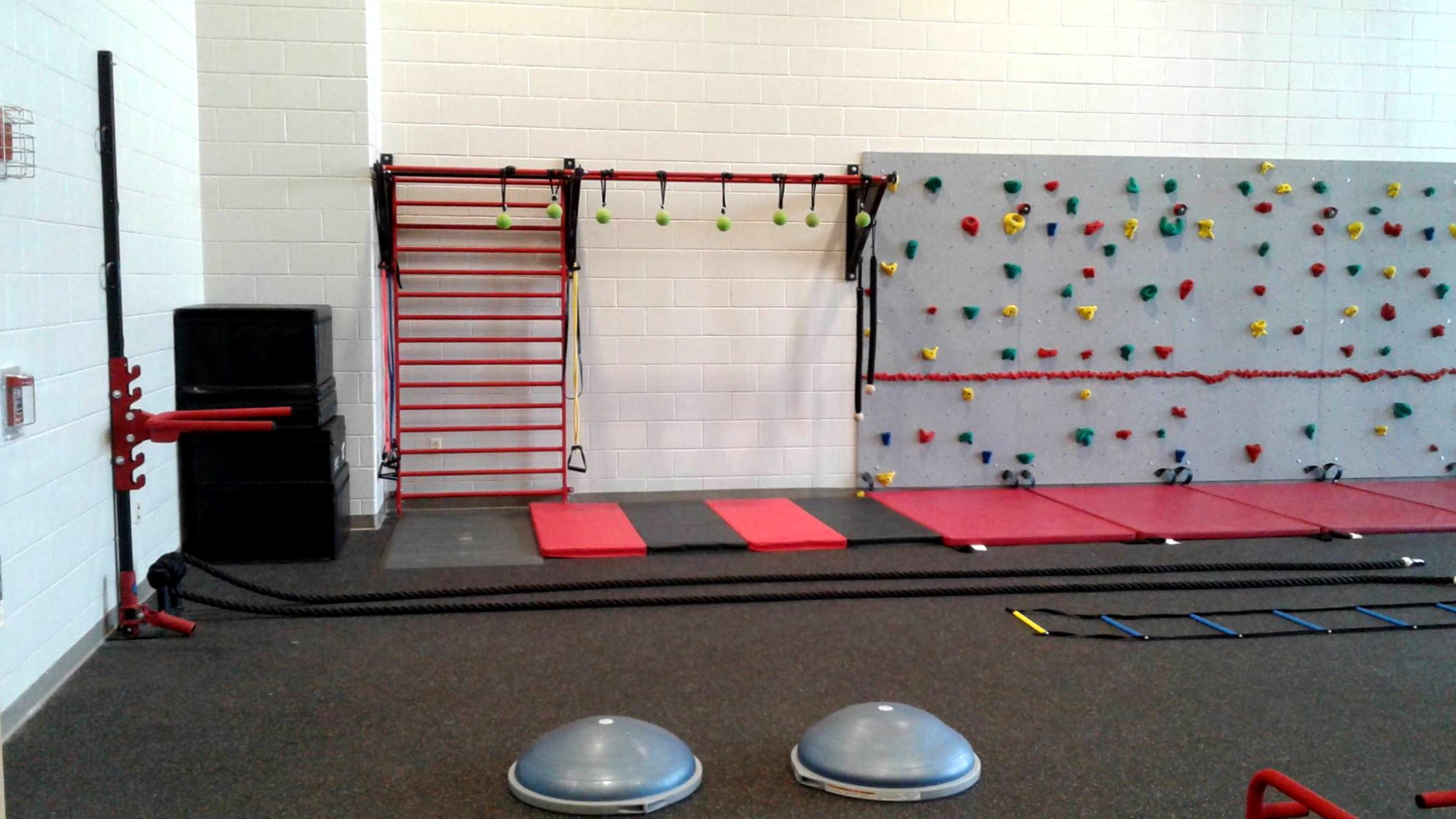 Wall mounted functional fitness