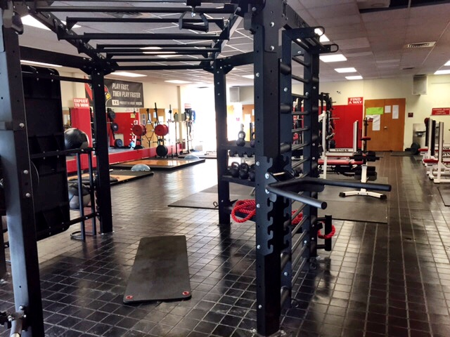 Horizontal staggered height monkey bars