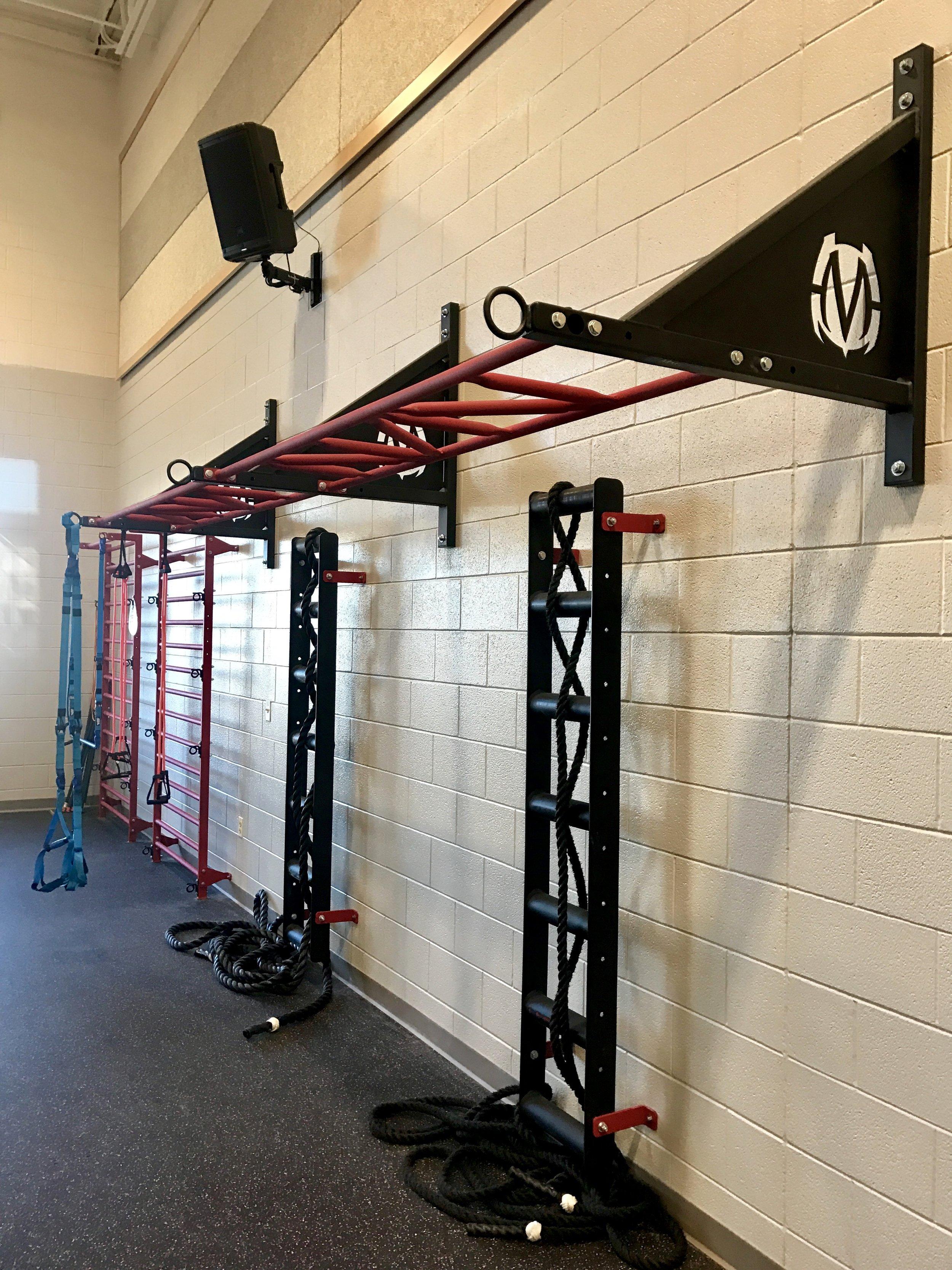 Wall mount monkey bars