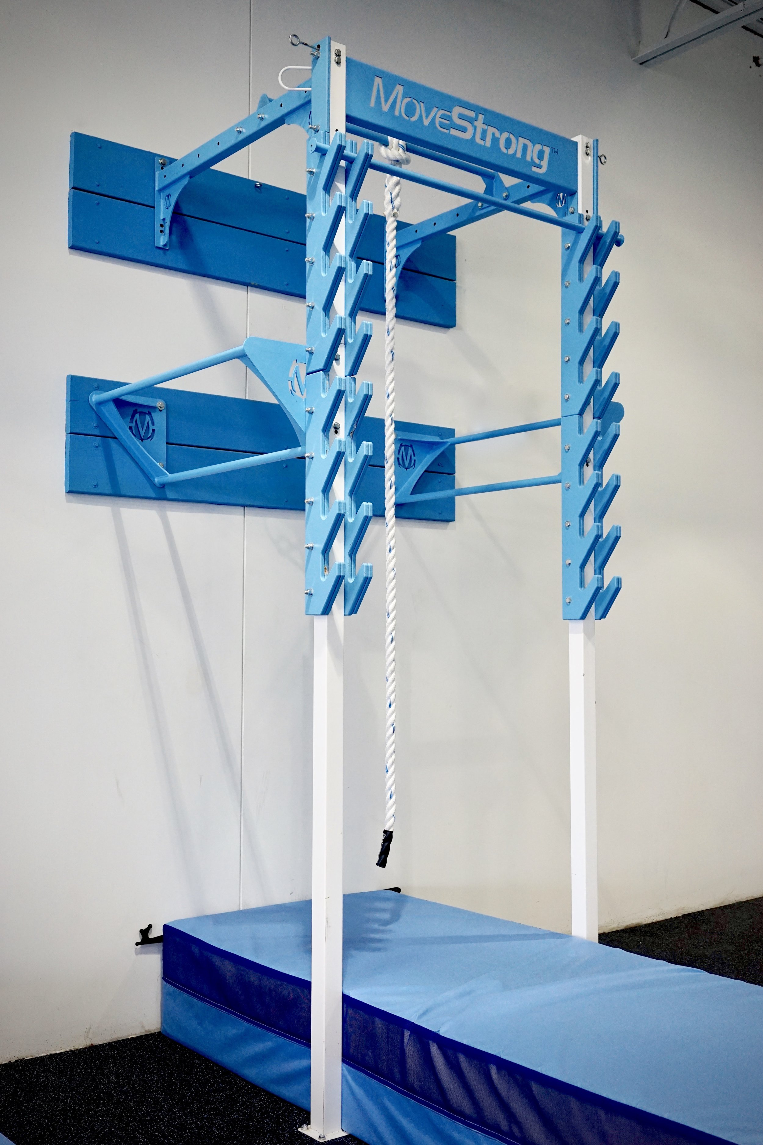 New Movestrong Salmon Ladder Now Available Movestrong