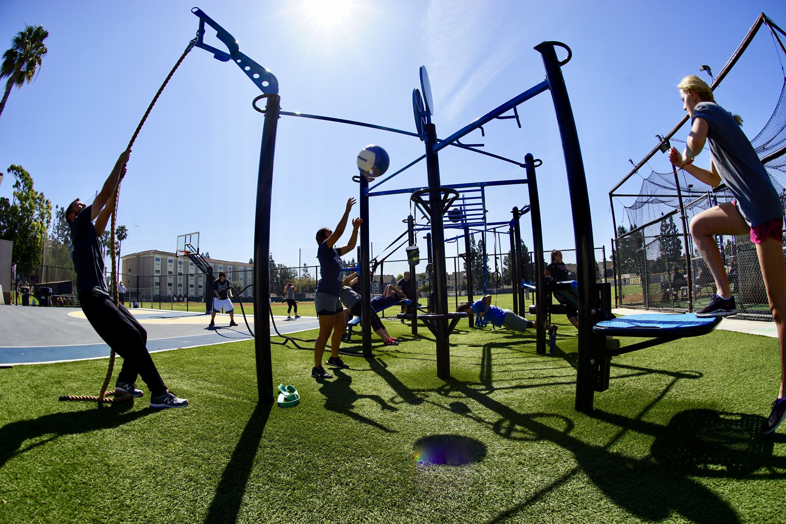 MoveStrong T-Rex outdoor functional fitness station