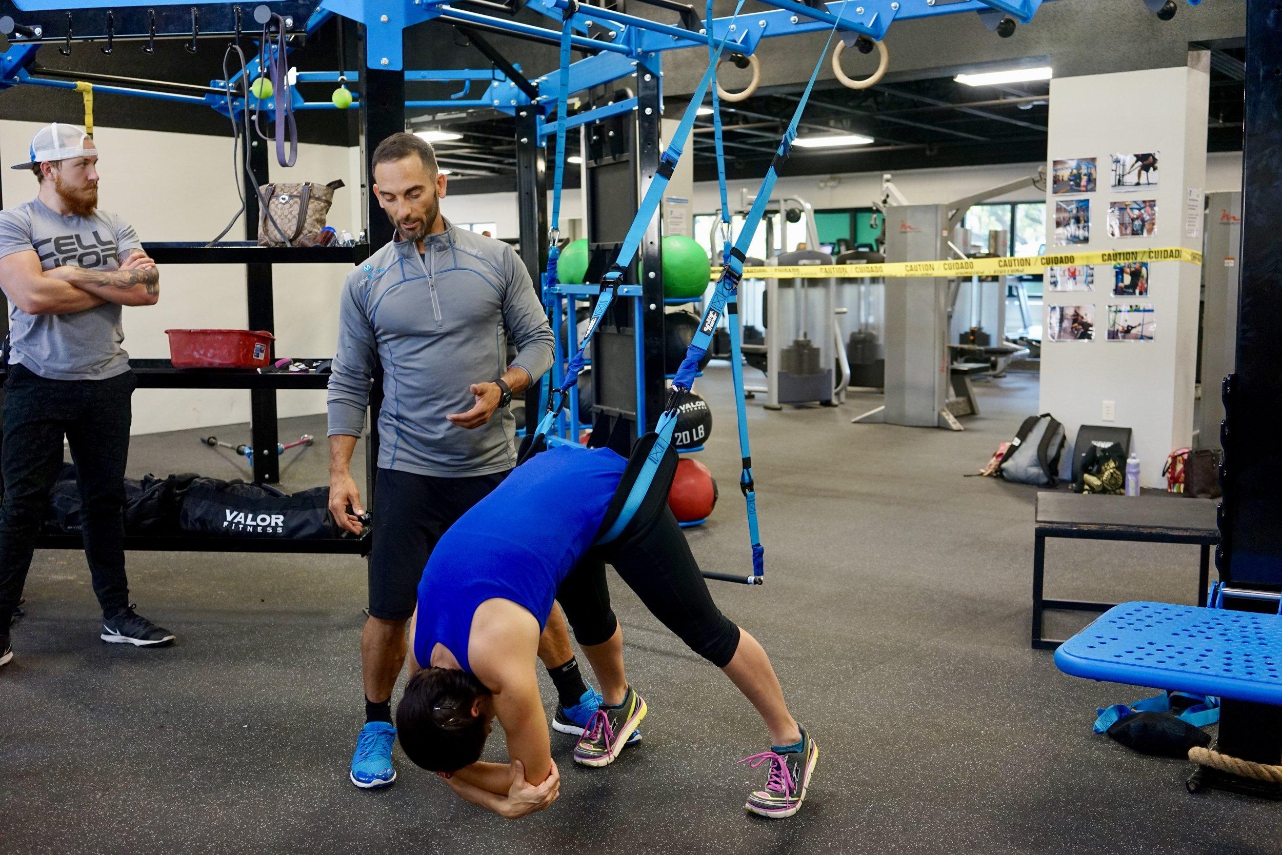 Back extension Elevate Trainer belts
