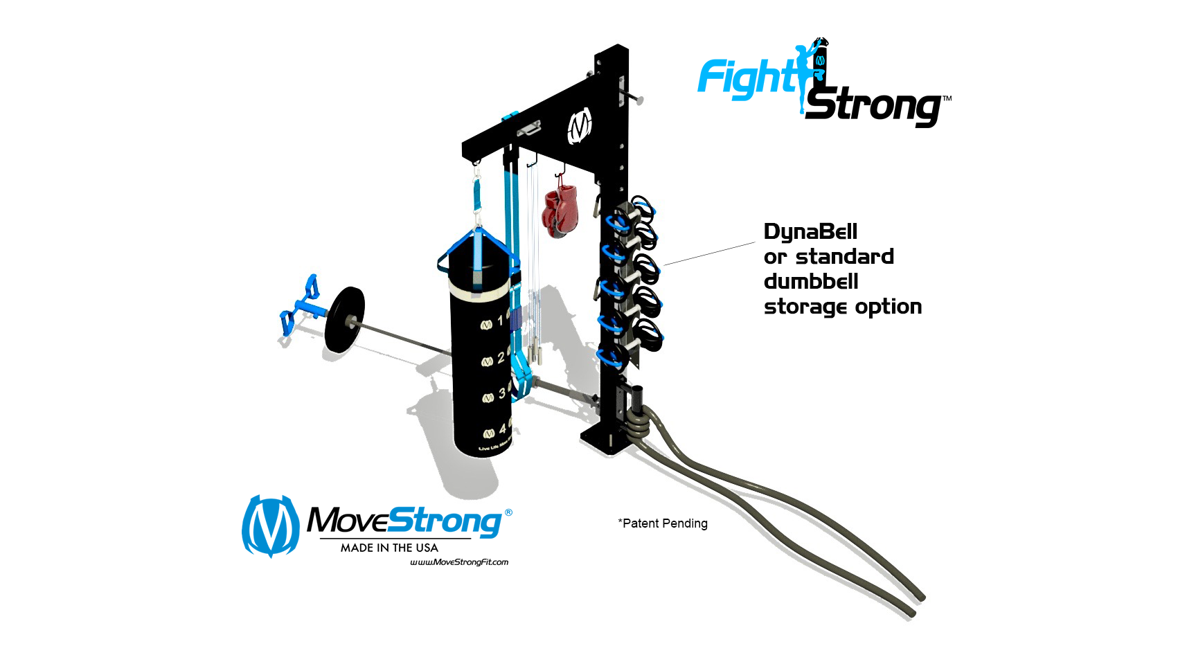 NEW storage option for MoveStrong DynaBells or standard hand weight dumbbells