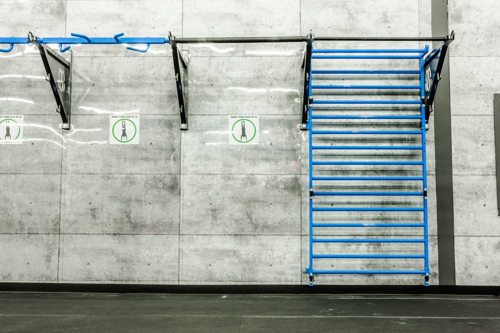Bodyweight Training Wall Mount