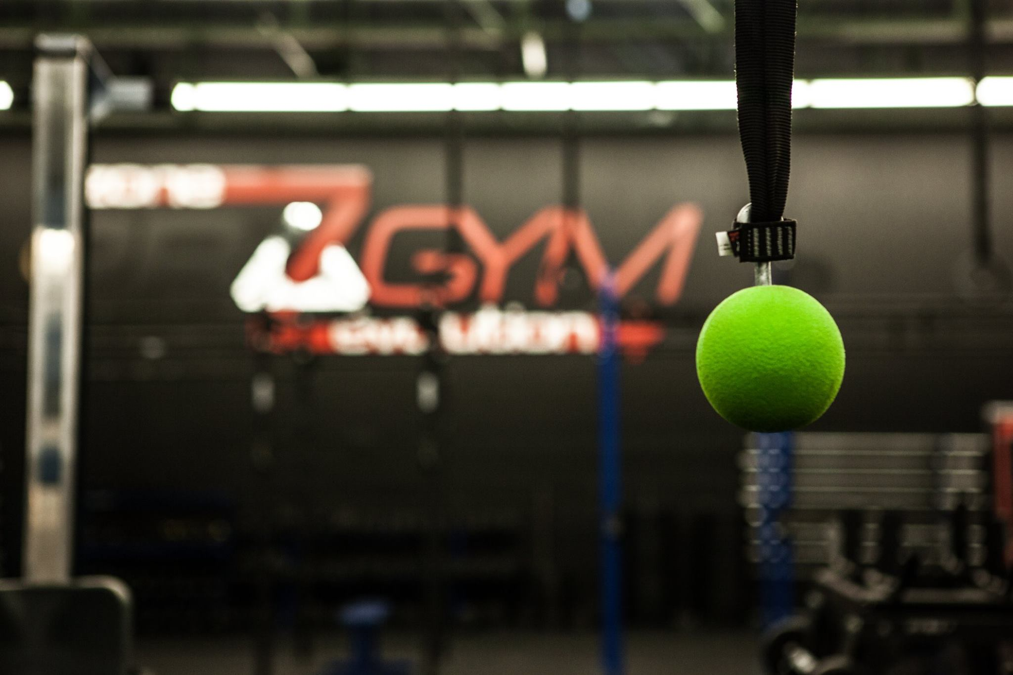 MoveStrong hanging globes