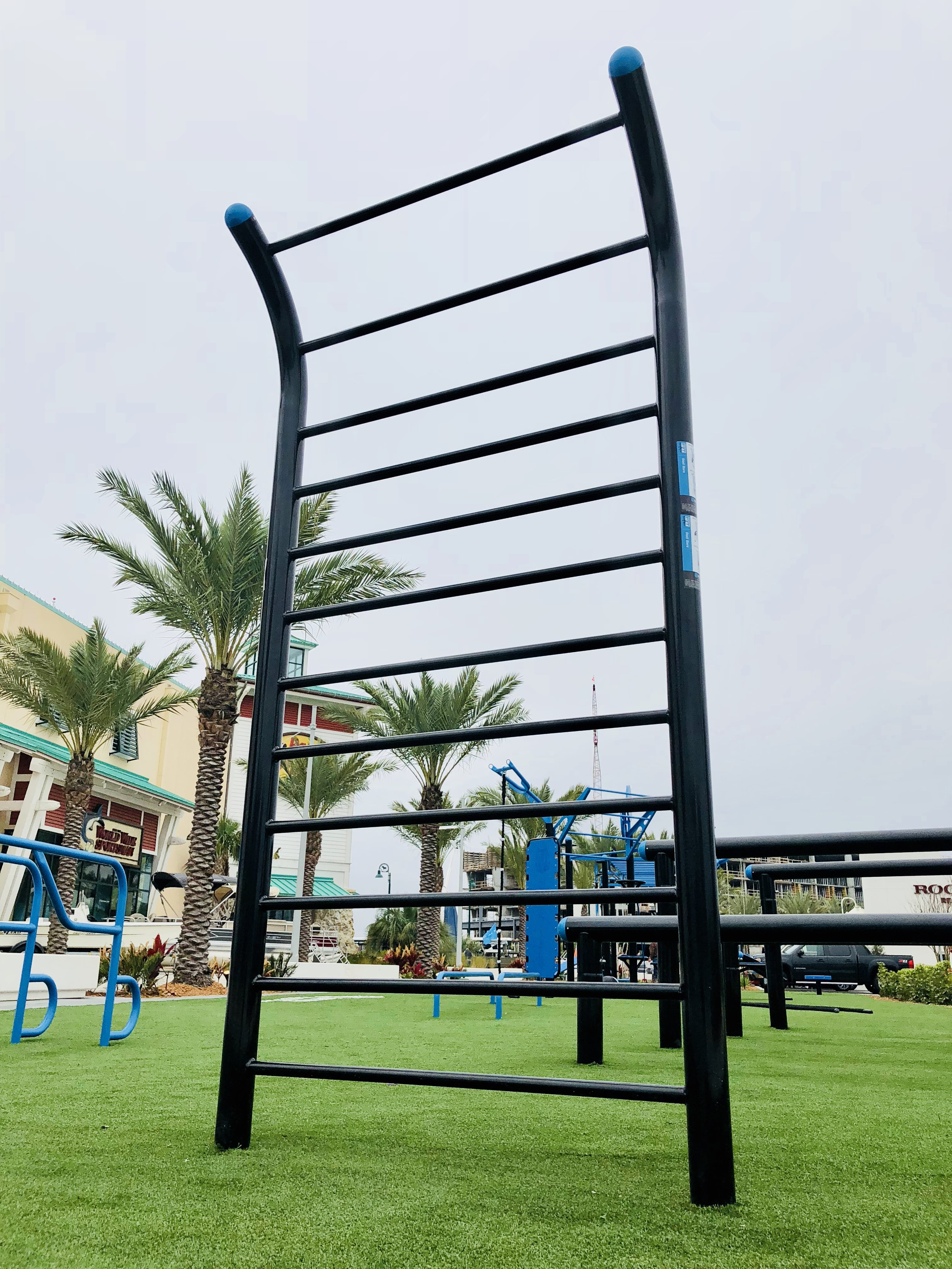 MoveStrong Outdoor Stall Bars